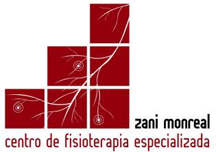 logo Zani Monreal